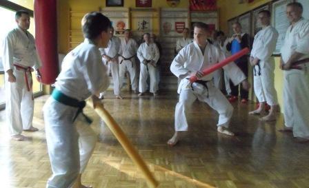 Karate Tsunami